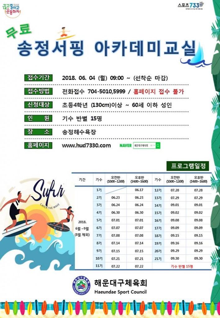 2018 서핑홍보지